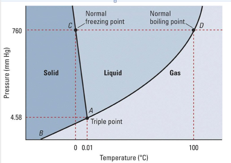 Boiling cold water under reduced pressure phase diagram of water herbert the vacuum pump phase diagram water ccuart
