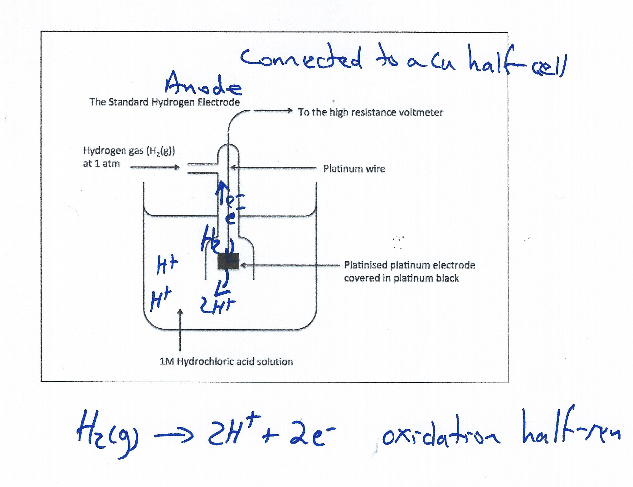 Voltaic cell standard hydrogen electrode demonstration chemdemos she electrode particle view image429 ccuart Gallery