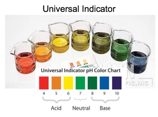 Buffer Solution Demonstration: Acetic Acid/Acetate vs  Water